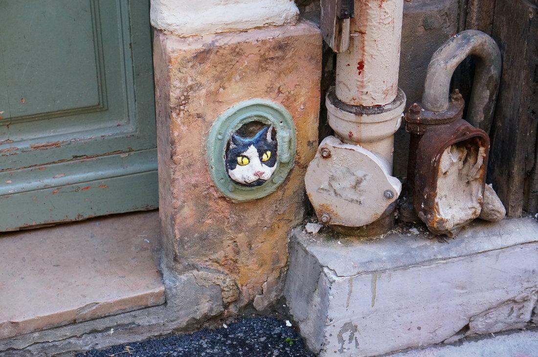 paris, paris street art, chat, cat paris