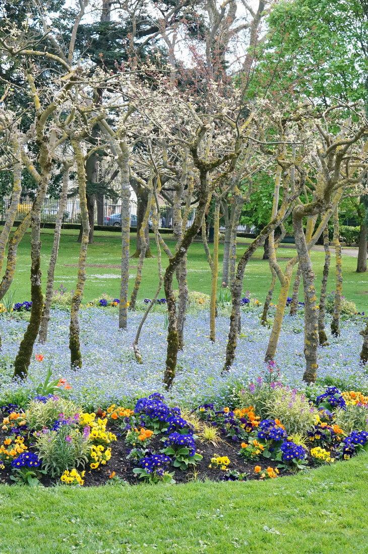 jardin des plantes toulouse, printemps toulouse