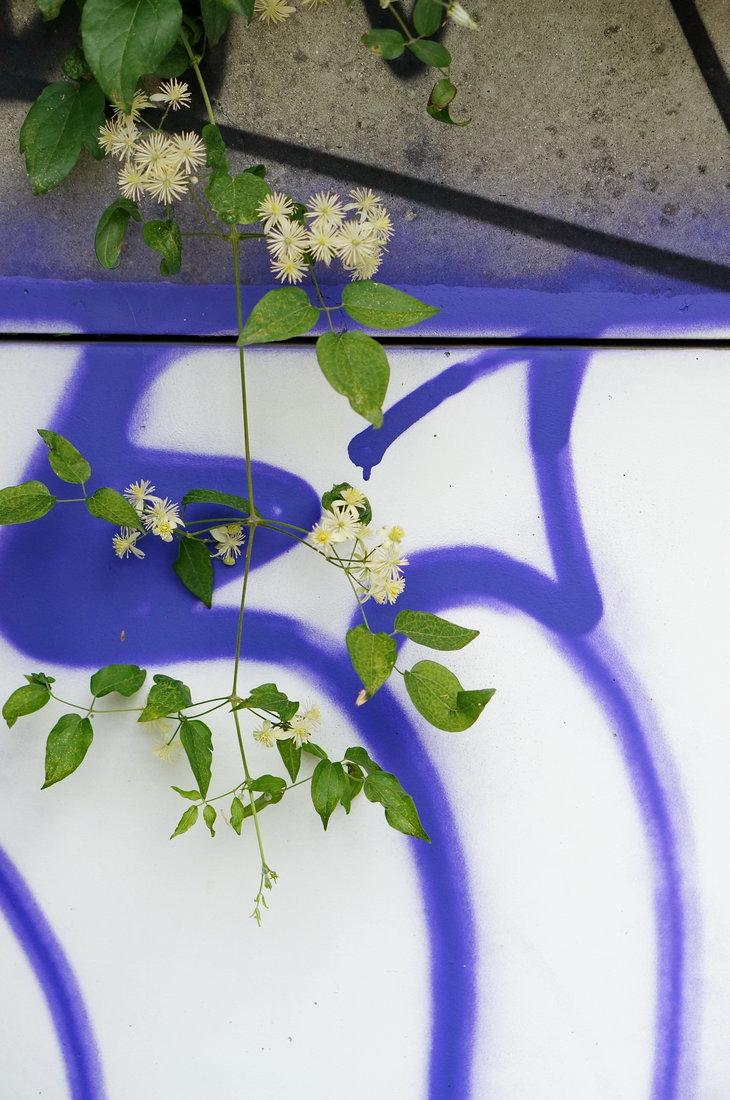 street art avenue, saint-denis, canal saint-denis