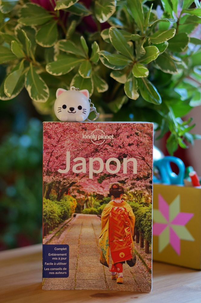 guide japon, guide lonely planet, guide lonely planet japon