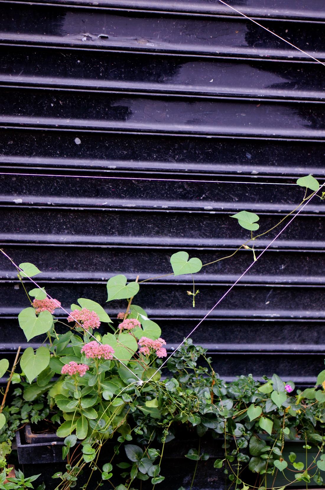 33 rue des vignoles, nueve 33, nueve paris, impasse secrète paris, paris secret