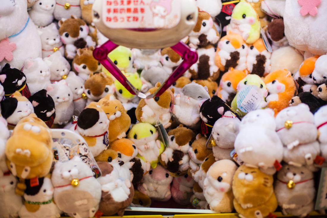 shinjuku, tokyo, tokyo by night, neon city, japon, japan, voyage au japon, japan trip, toys, peluches, jeu de la pince