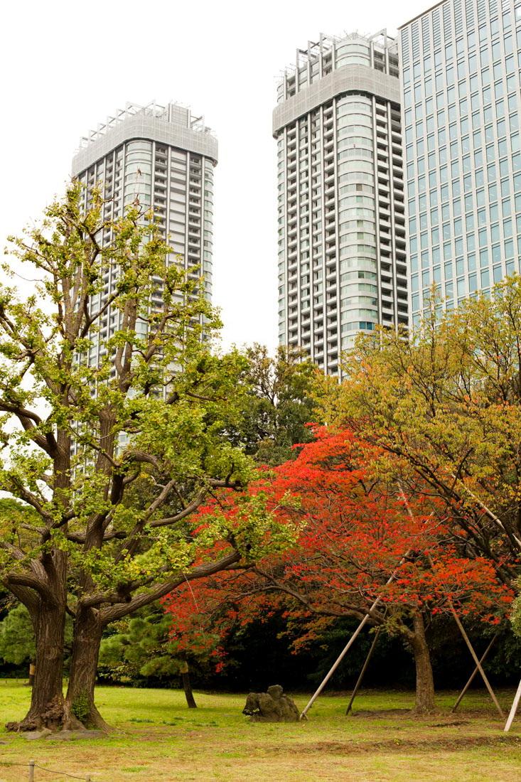 hama-rikyu gardens, jardin hama-rikyu, baie de tokyo, tsukiji, japon, voyage au japon, japan trip, tokyo, tokyo city guide