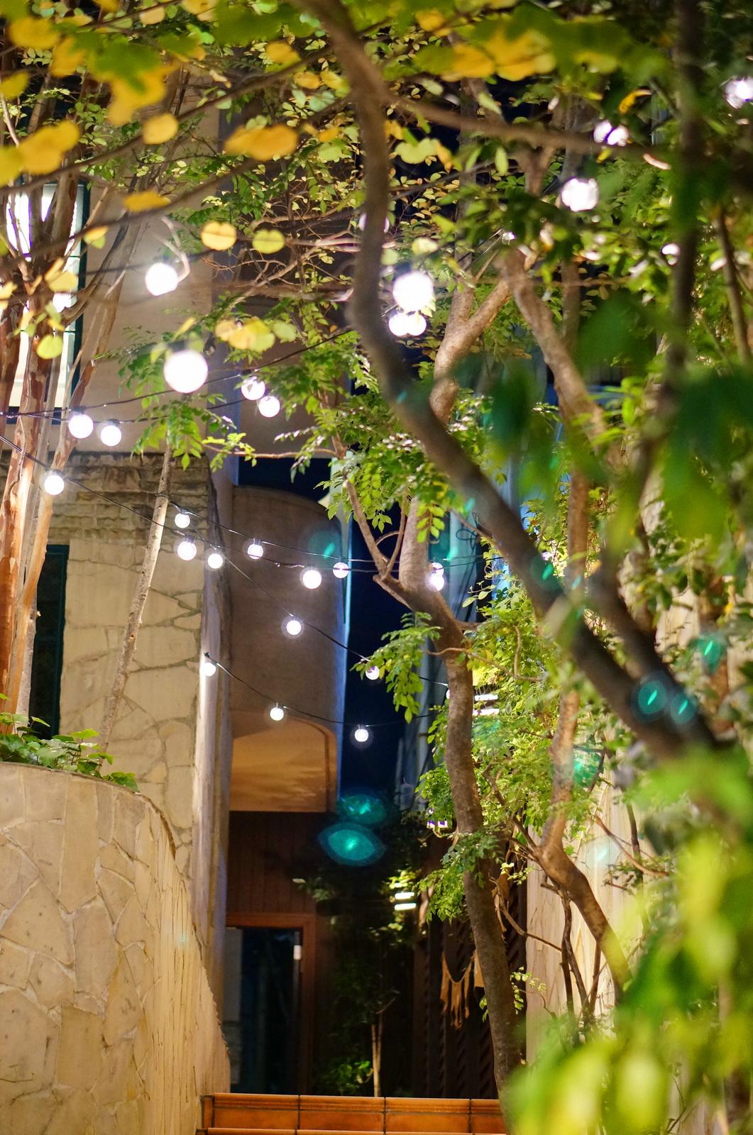 shibuya, tokyo by night, tokyo nuit, cat's street