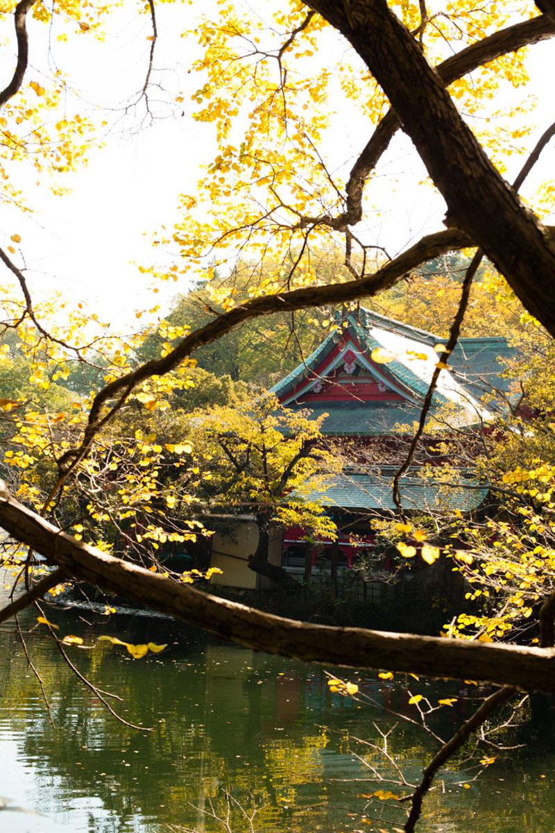 ghibli museum, tokyo trip, japan trip, voyage japon, séjour japon, tokyo, musée ghibli