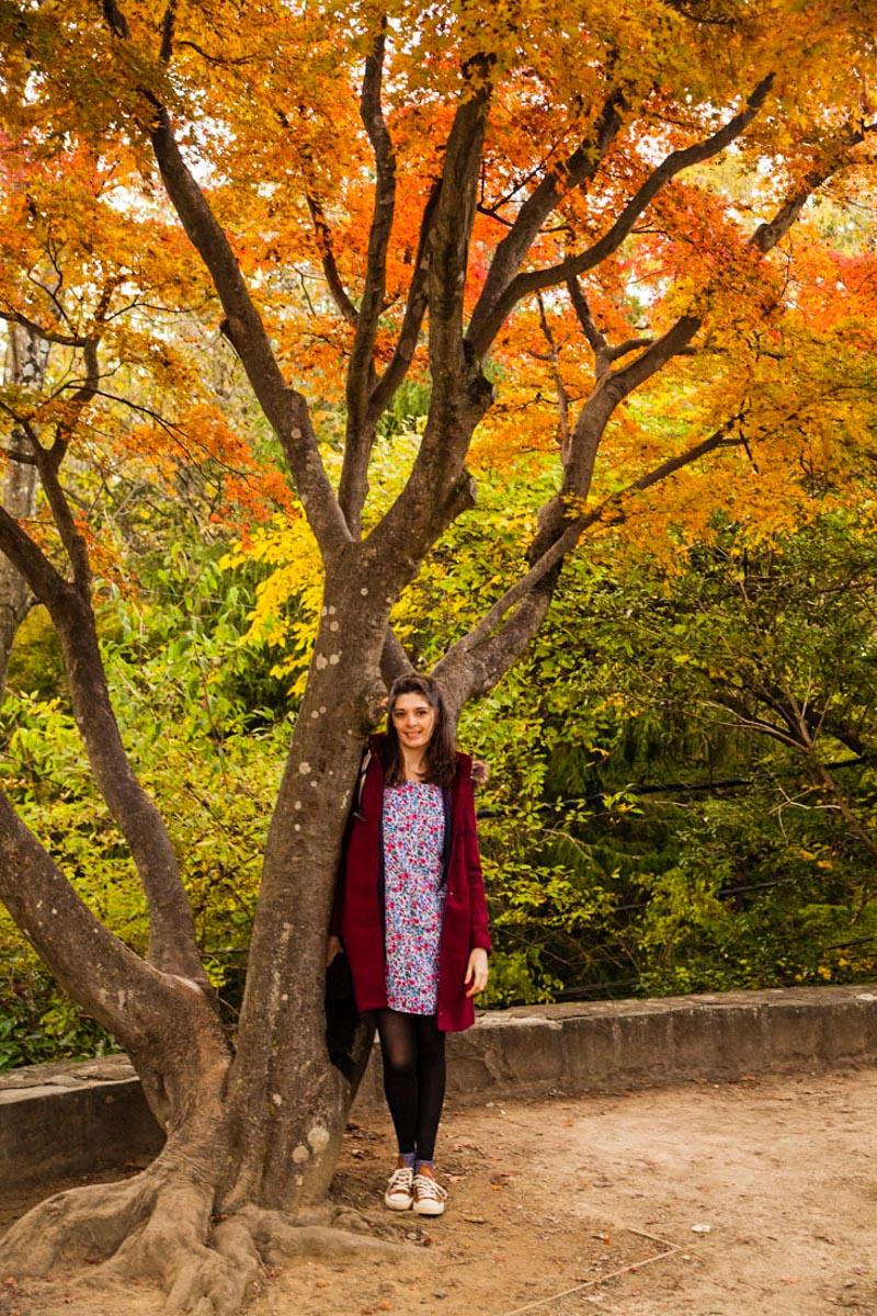 mont takao, takao mount, escapade autour de tokyo, campagne tokyo, week-end tokyo, montagne près de tokyo, japon, japan trip, voyage au japon, momiji