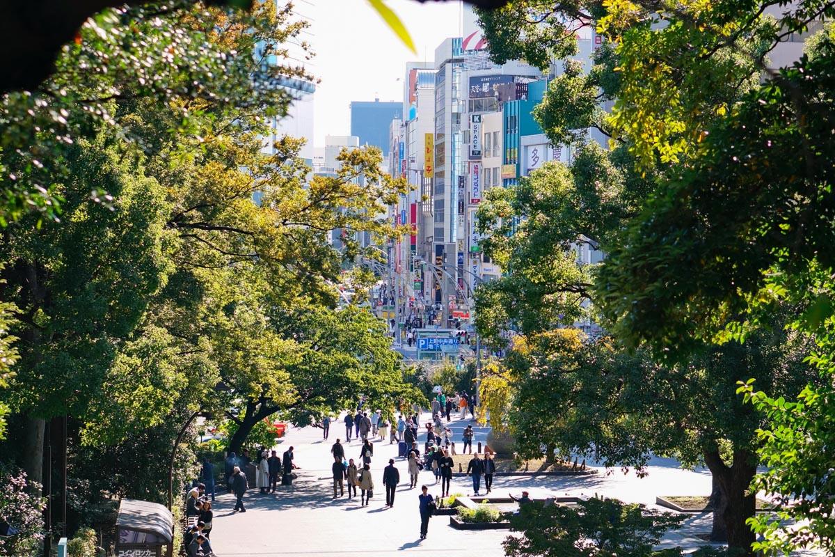 ueno, ueno park, parc ueno, tokyo city guide