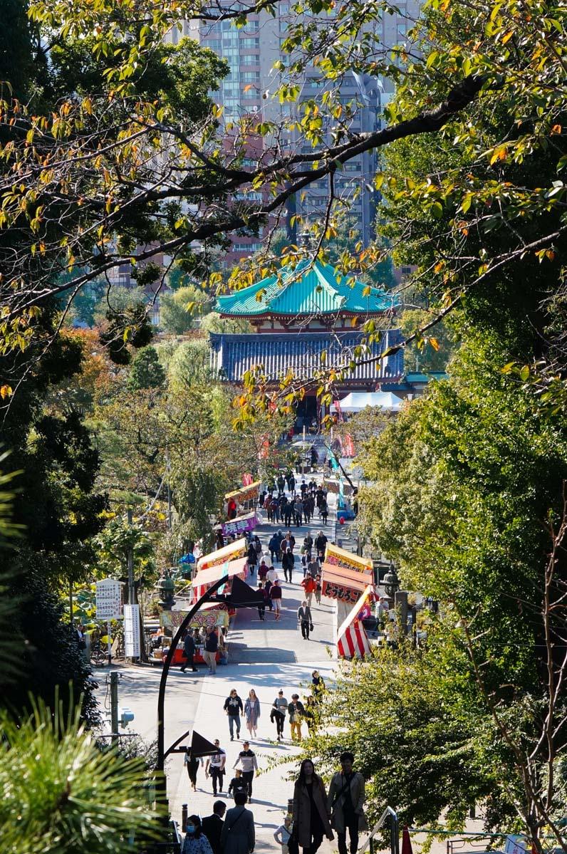 ueno, ueno park, parc ueno, tokyo city guide, jardin tokyo, park tokyo, parc tokyo