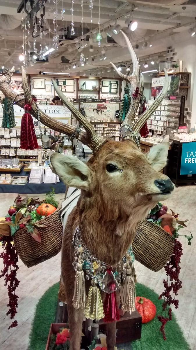 shibuya, omotesando, shopping tokyo, tokyo city guide, japan trip, laforêt tokyo