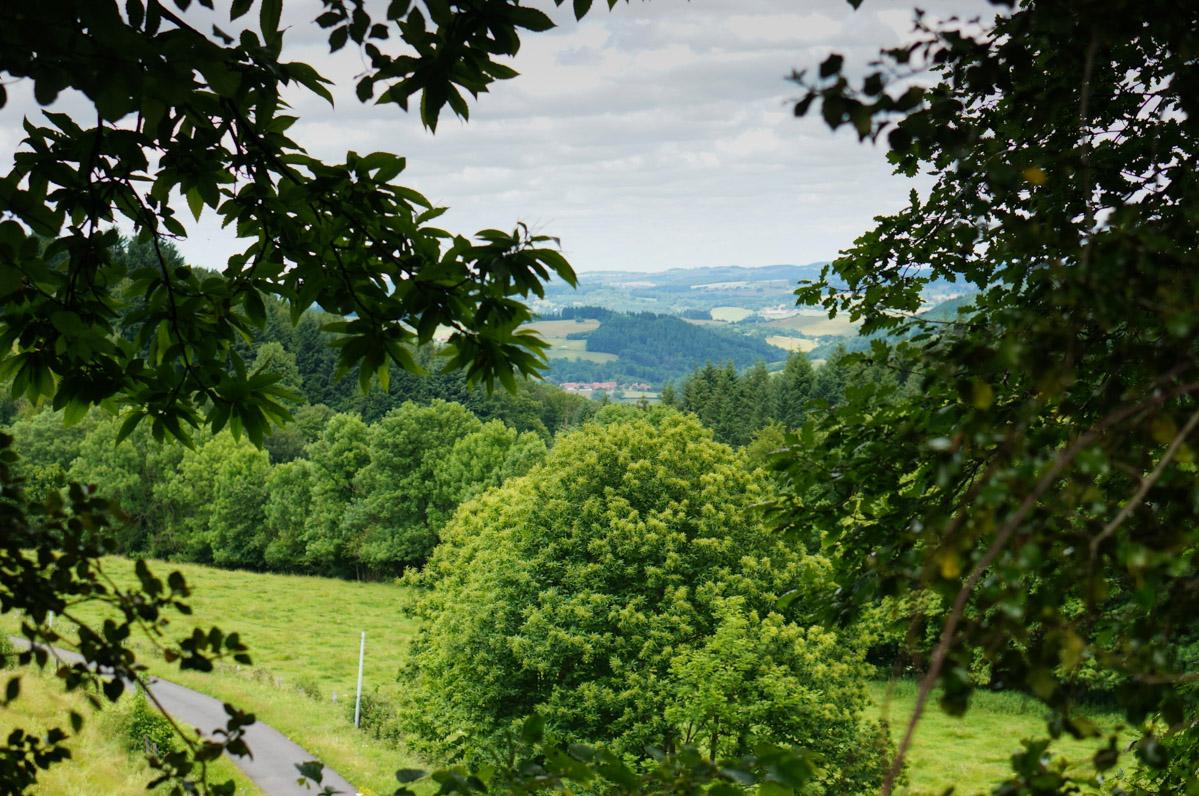 arfeuilles, allier, auvergne, tourisme auvergne, week-end auvergne, week-end allier, week-end nature, week-end randonnée forêt