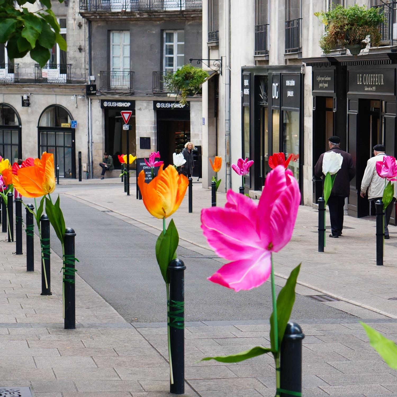 Nantes_08589