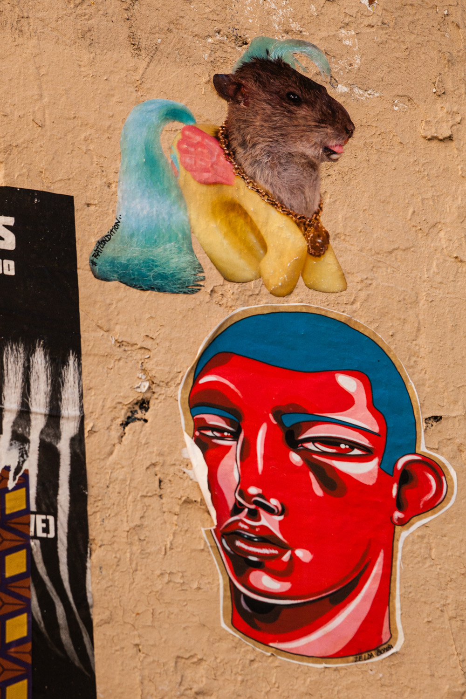 street art Paris 11 et 20_4133