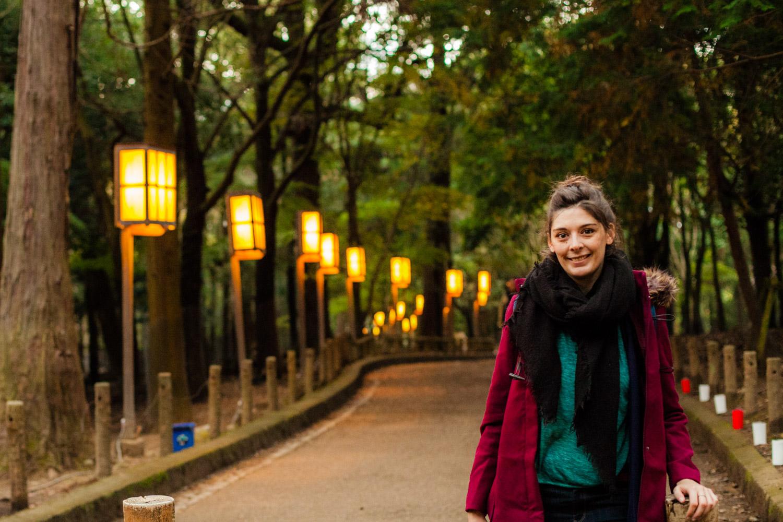 nara, nara tourisme, nara japon, nara de nuit, nara by night, lanternes japonaises