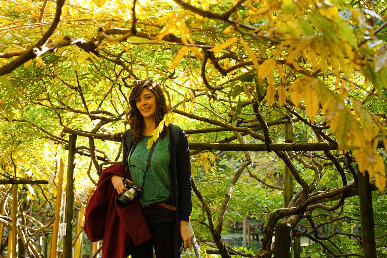 jardin botanique man'yo, jardin botanique nara, jardin botanique Kasuga Taisha, jardin Kasuga Taisha, jardin nara, balade nara, nature nara, momiji nara, érables momiji, momiji japon