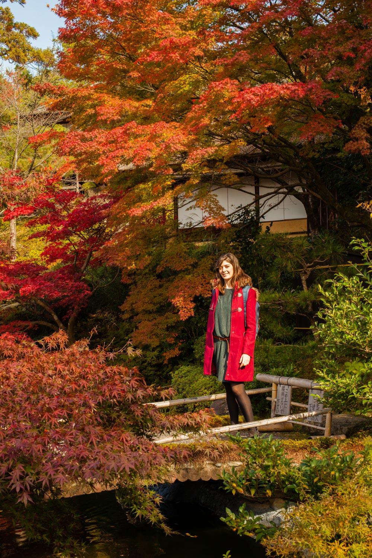 momiji, momiji kyoto, voyage kyoto, gion kyoto, gion, automne kyoto