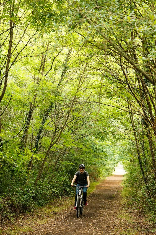 forêt des landes de gascogne, domaine des lacs d'hostens, tourisme gironde, week-end gironde, week-end au vert, balade vtt, vtt forêt gironde, vtt aquitaine, balade forêt