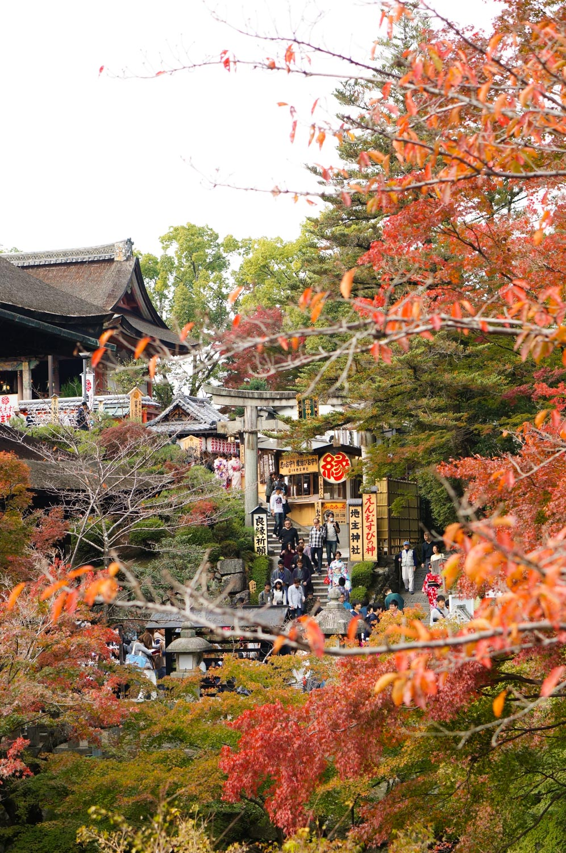 kiyomizu-temple, temple kiyomizu, kyoto