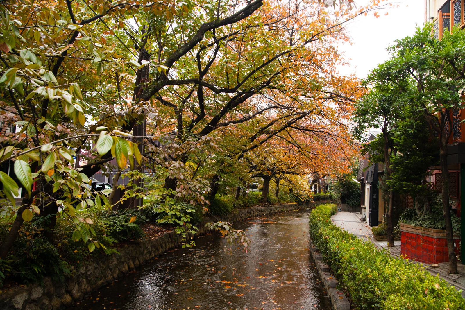 1311 Kyoto J2_0933