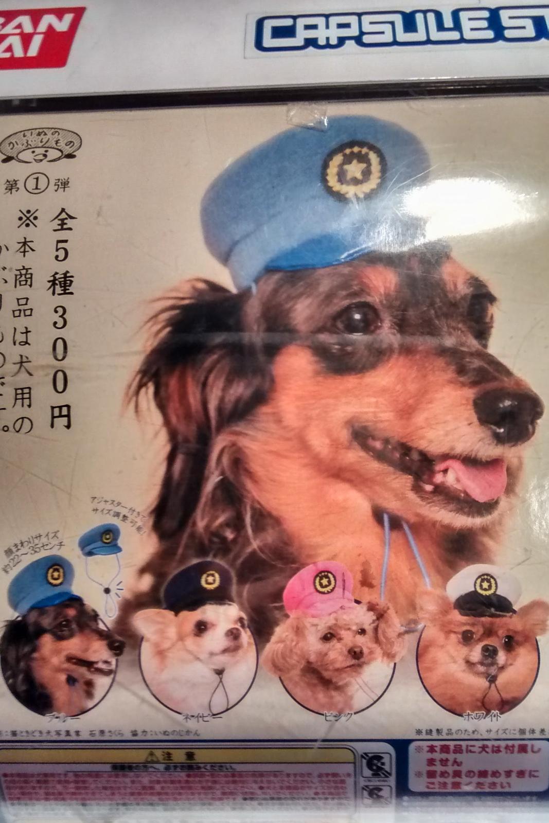 japon insolite, japon bizarre, japon drôle, curiosités japon,