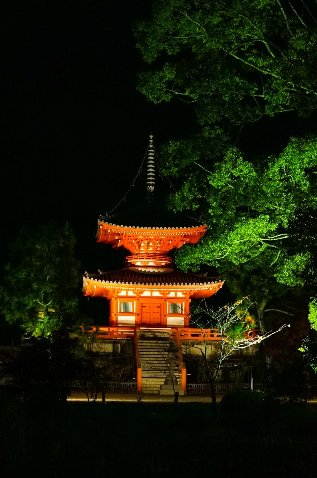 Kyoto, momiji kyoto, voyage kyoto, séjour kyoto, kyoto automne, kyoto fall, kyoto autumn, kyoto érables, kyoto by night, momiji by night, daikakuji, daikaku-ji, daikakuji temple