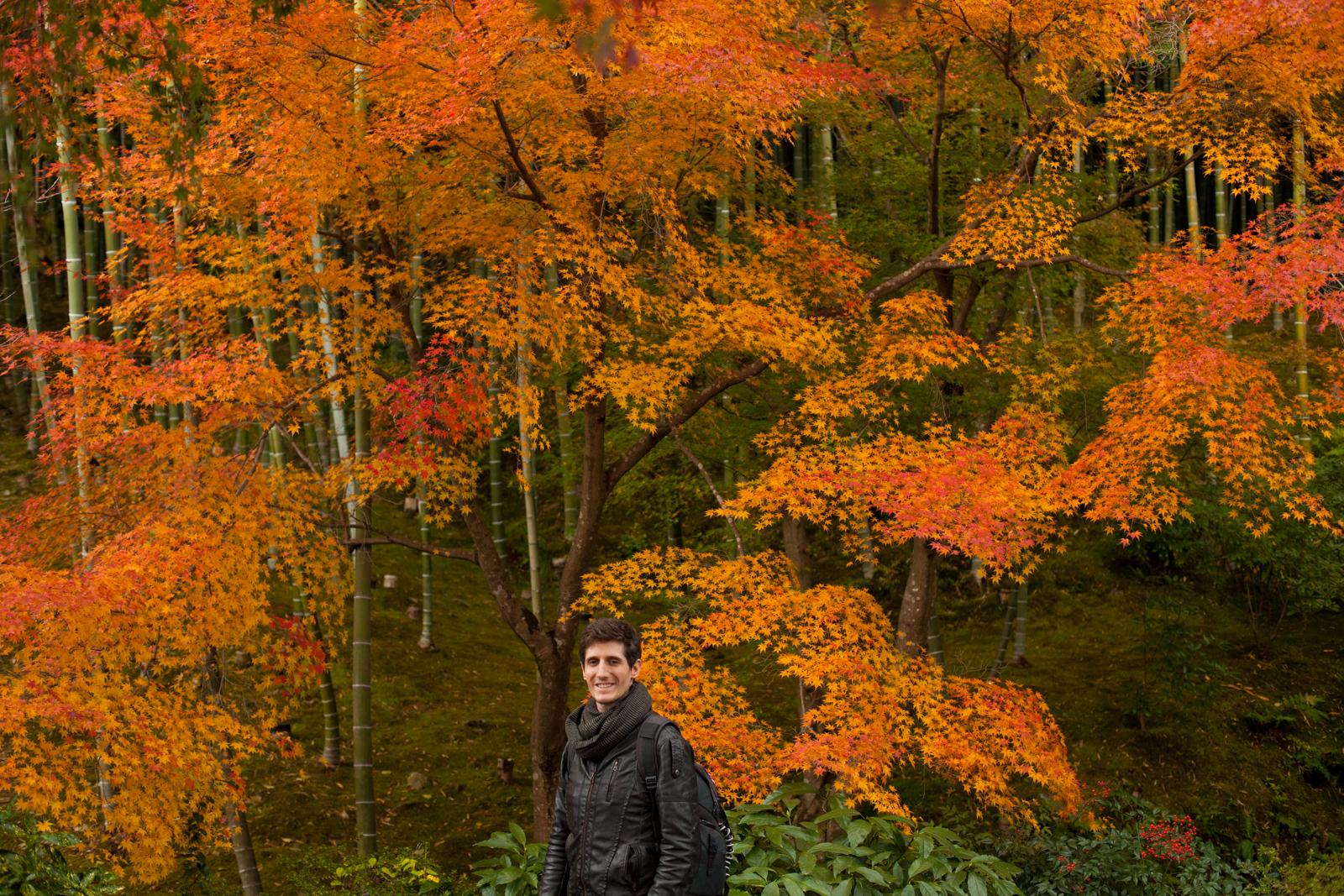 Kyoto, momiji kyoto, voyage kyoto, séjour kyoto, kyoto automne, kyoto fall, kyoto autumn, kyoto érables, tenryu temple, tenryu-ji, tenryuji