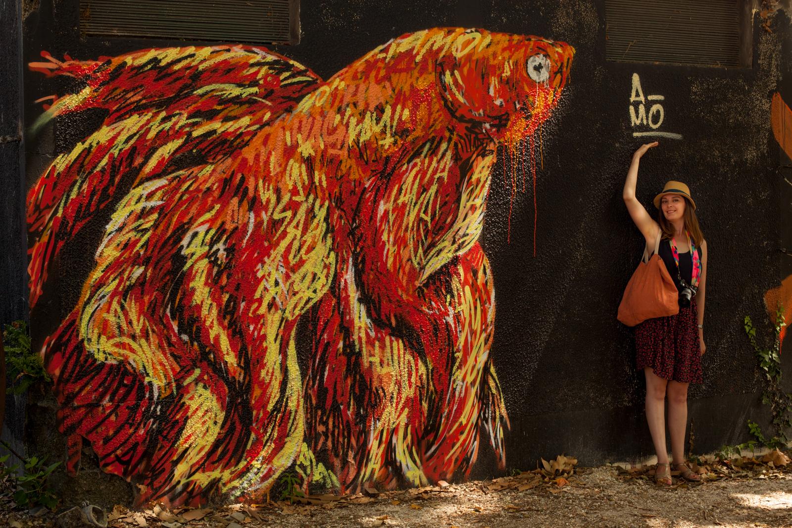 bordeaux, festival shake well, street art shake well, street art bordeaux, vivres de l'art