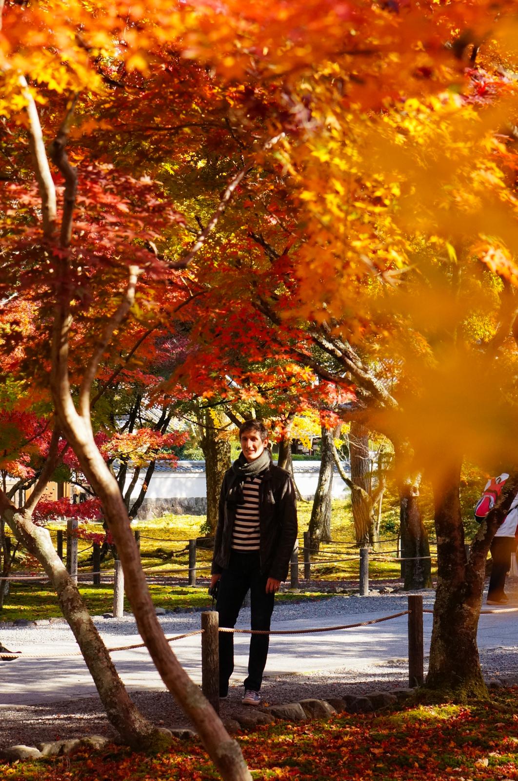kyoto, kyoto chemin de la philosophie, kyoto momiji, automne kyoto, balade kyoto, séjour kyoto, voyage kyoto, érables kyoto, jardins kyoto, nanzen-ji, nanzen-ji kyoto