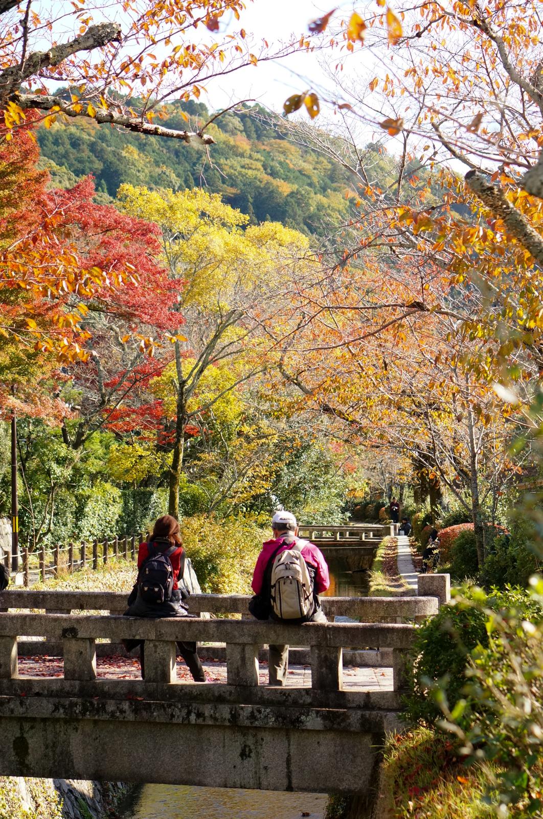 kyoto, kyoto chemin de la philosophie, kyoto momiji, automne kyoto, balade kyoto, séjour kyoto, voyage kyoto, érables kyoto