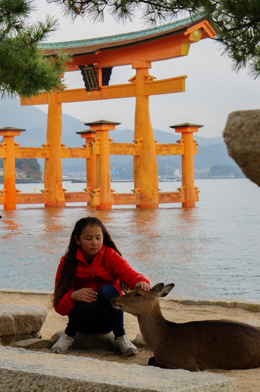 miyajima, voyage japon, île miyajima, torii flottant, torii mer