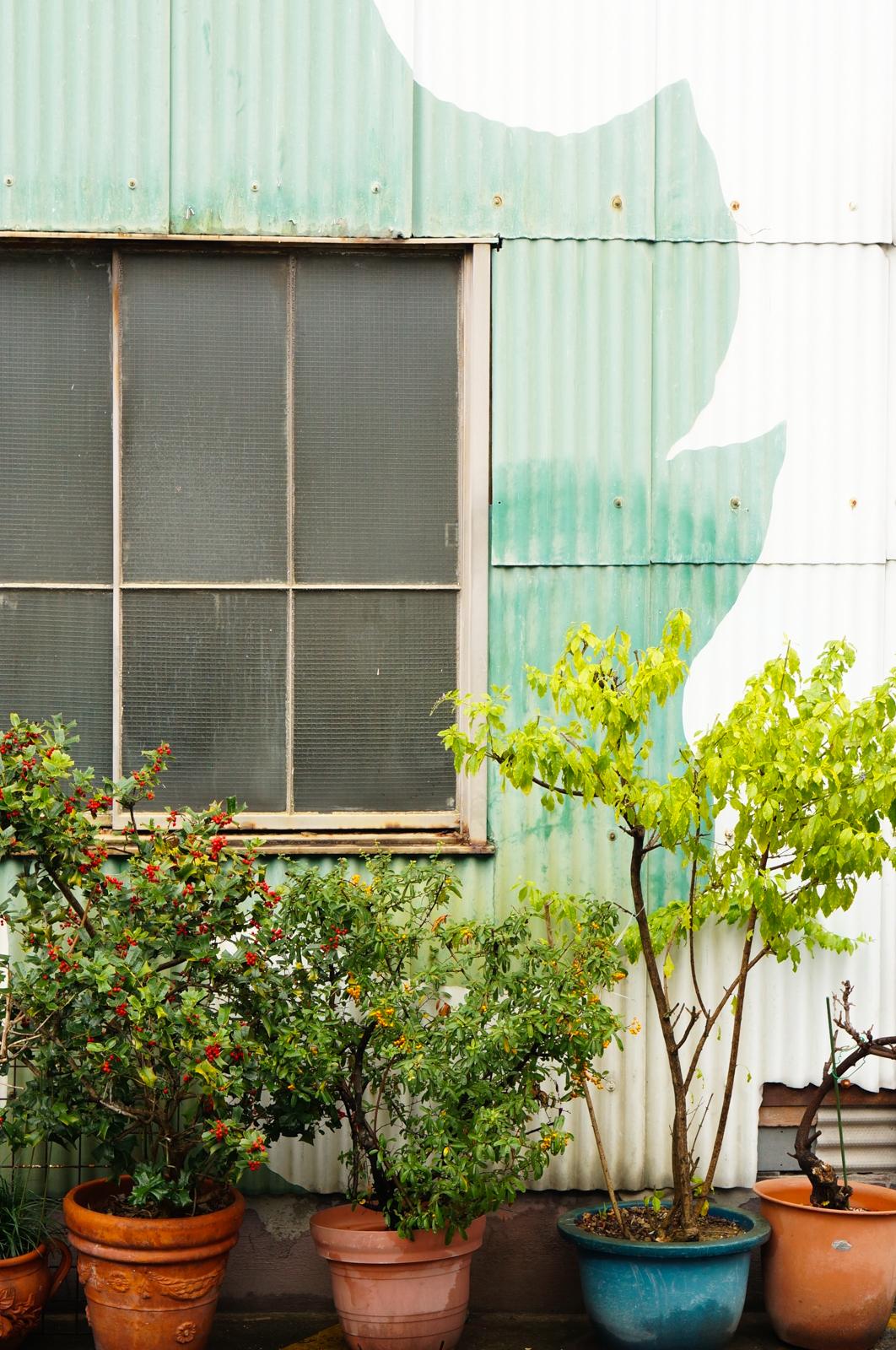 osaka, green osaka, osaka vert, osaka authentique, osaka village, voyage japon, japon