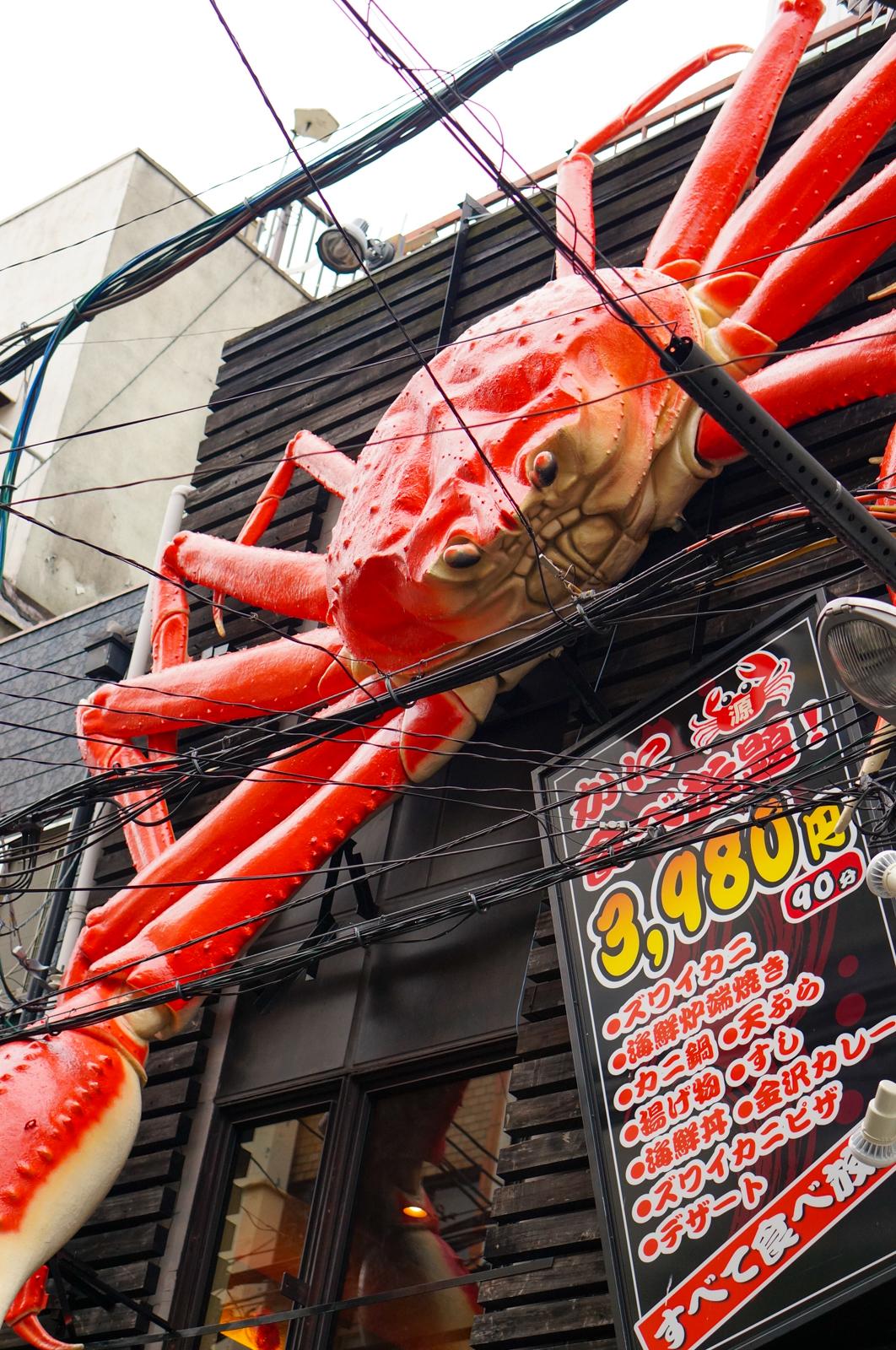 osaka, voyage japon, visiter osaka, osaka authentique, osaka enseigne, osaka enseignes géantes, osaka crabe, osaka crabe géant