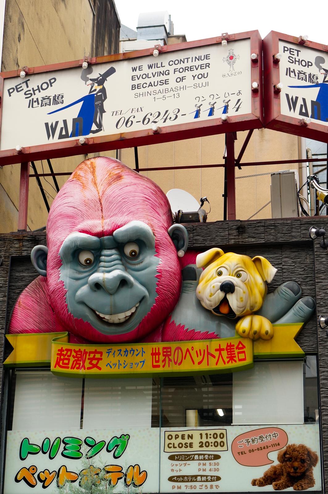 osaka, voyage japon, visiter osaka, osaka authentique, osaka enseigne, osaka enseignes géantes, osaka gorille, osaka animalerie