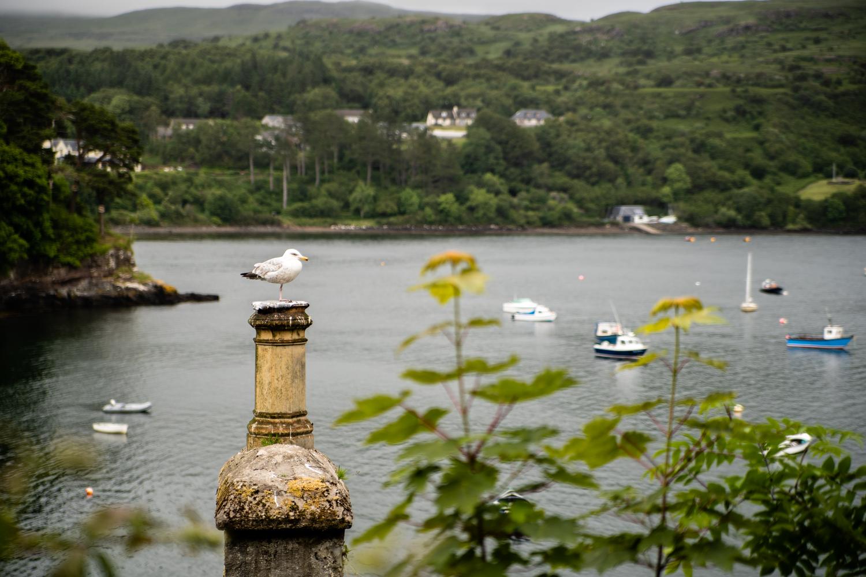 île de skye, écosse travel, écosse blog 2019, écosse blog 2018, fairyglens, fairyglens skye, fairy glens, fairy glens écosse, fairy glens scotland, fairy glens skye, portree