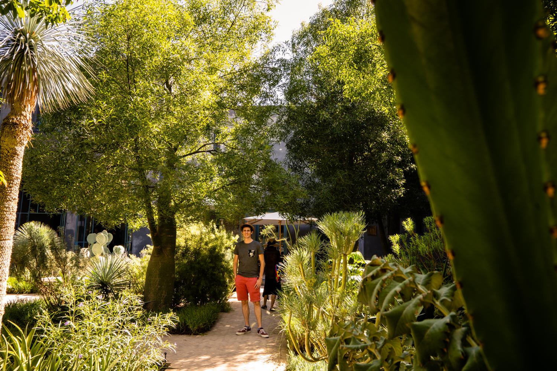 marrakech jardin, marrakech jardin secret, marrakech original, marakech au vert, idée balade marrakech